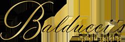 Eispalast Steisfurt Logo
